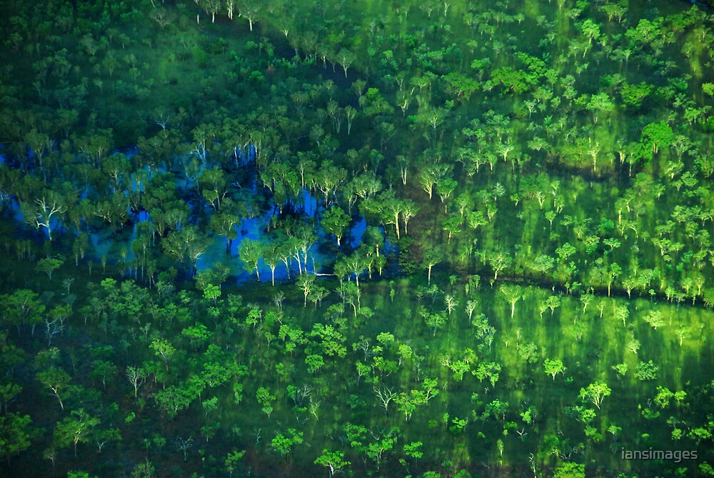 Aerial #1 Kakadu NT by iansimages