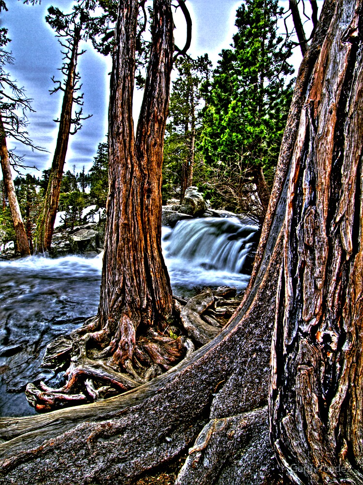 Lower Eagle Falls 2 by Gary Rondez