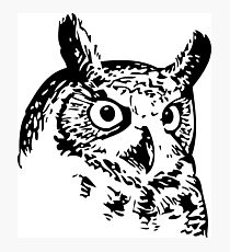 Great Owl Vintage Drawing Photographic Print