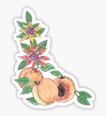 Apricots with flowers watercolor inked  Sticker
