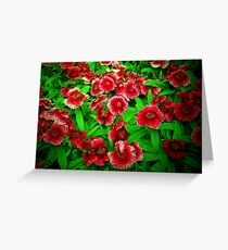 Bright Blessings Greeting Card
