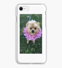 Leo the Pomeranian iPhone Case/Skin