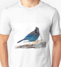 Mountain Jay on Snowy Feeder T-Shirt