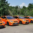 Orange Focus Line Up by Vicki Spindler (VHS Photography)