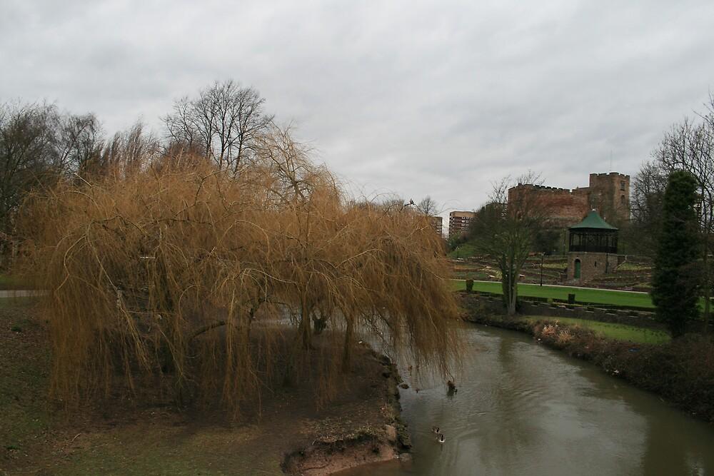 river rolls by chrismcgann