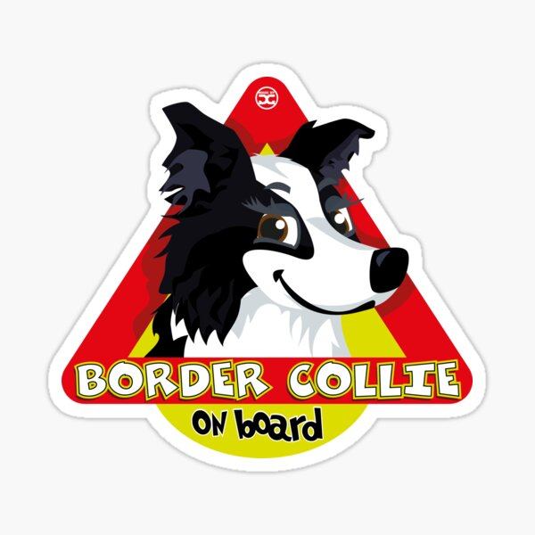 Border Collie On Board - Black & White Female Sticker