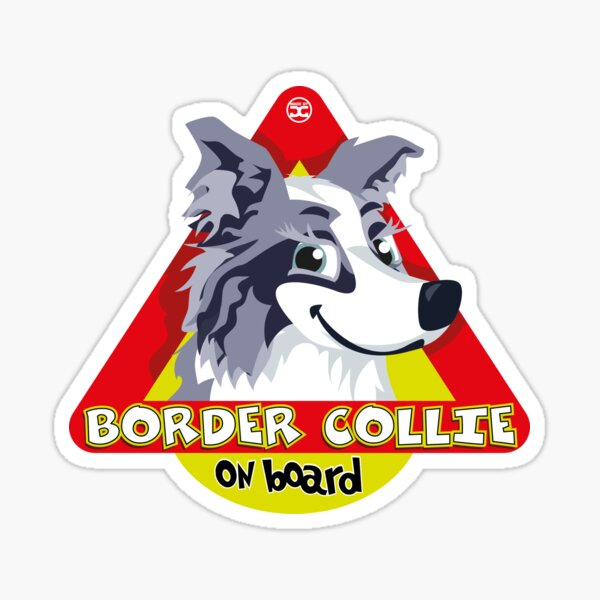 Border Collie On Board - Blue Merle Female Sticker
