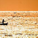 Golden Fishing by Andy Harris