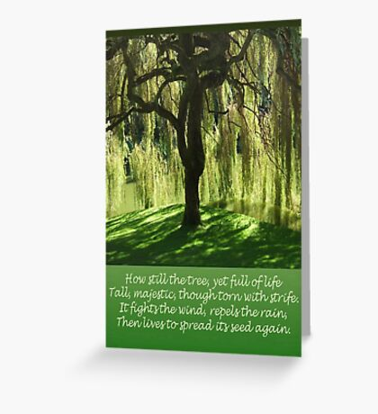 How Still the Tree Photograph and Prose Greeting Card