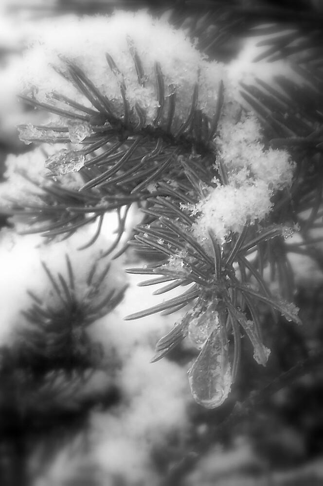 The Ice Drop by babyangel