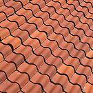 Tiled Roof by Thaddeus Zajdowicz