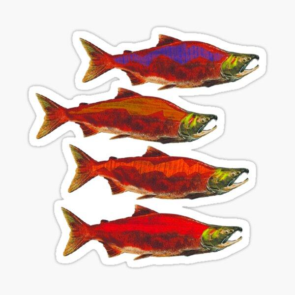 Salmon School Sticker