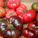 Heirloom Variety Tomatoes by DonnaMoore
