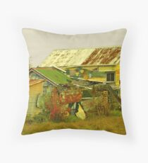 United Colors of Timaru Throw Pillow