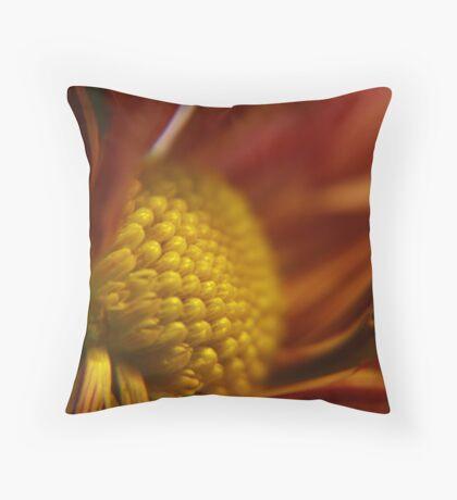 Cinnamon Throw Pillow
