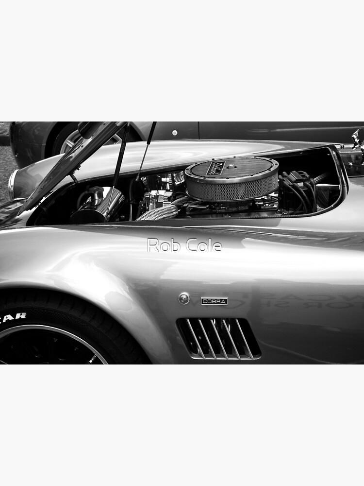 Classic AC Cobra Sports Car by robcole