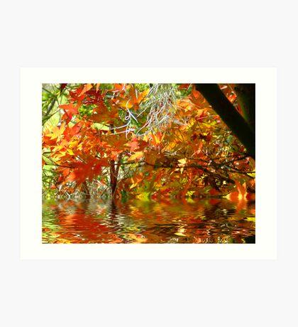 Autumn Leaves.. Art Print