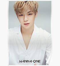 Daniel Kang Poster