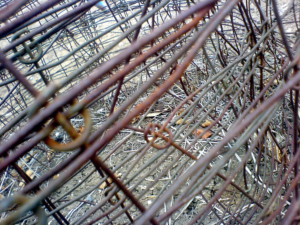 Barbed Wire by EmmiMac