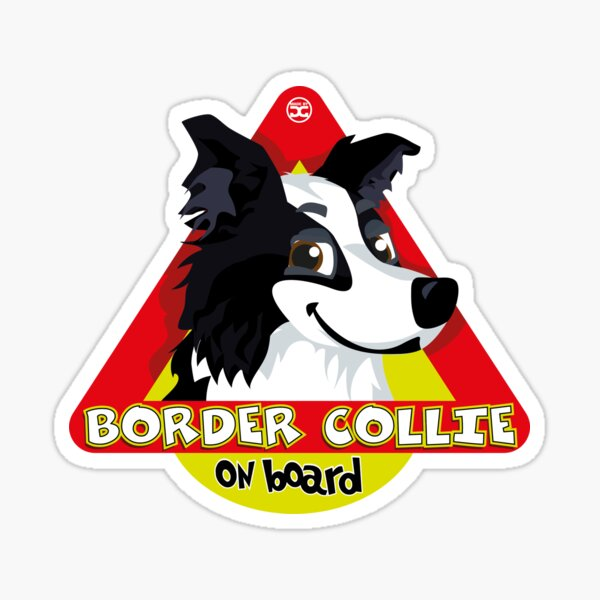 Border Collie On Board - Black & White Male Sticker
