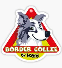Border Collie On Board - Blue Merle Male Sticker
