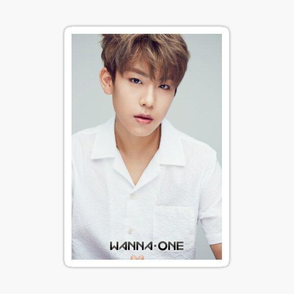 Park Woojin Sticker