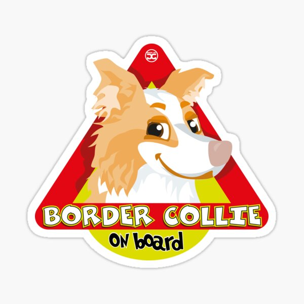 Border Collie On Board - Red Male Sticker