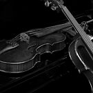 Charcoal Violins by Avalinart