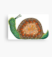 Jonathan Livingston Snail Canvas Print