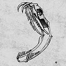 Snake Skull by . VectorInk