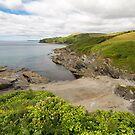 Lantivet bay Cornwall by eddiej