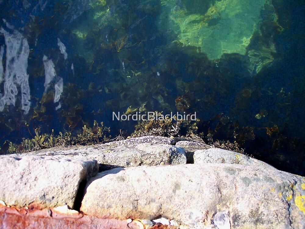 Into The Blue by NordicBlackbird