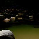 Magnificent Mossman Gorge by Imi Koetz