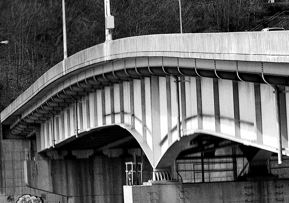 Bridge Over Monongalia River by shadyuk