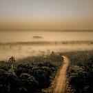 The Mist by Deborah V Townsend