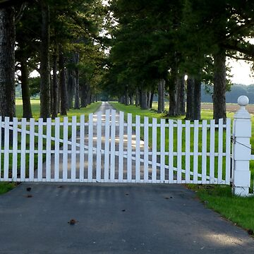 The Gates Of Wingmeade by WildestArt