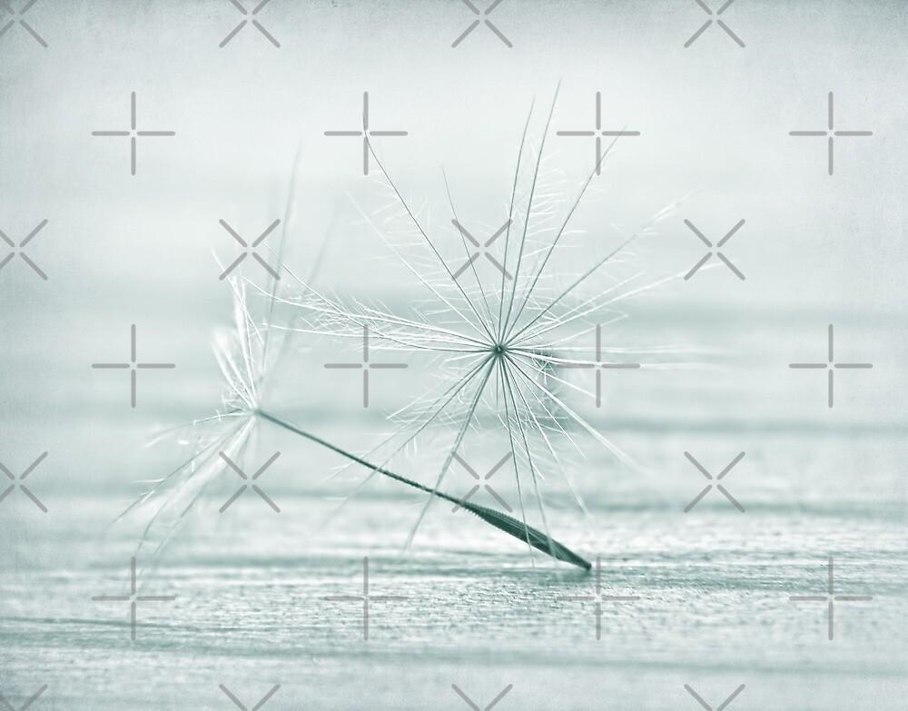 snowflake by Ingrid Beddoes