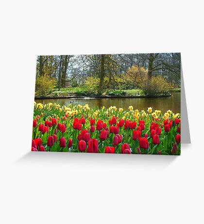 Its Spring!! Greeting Card
