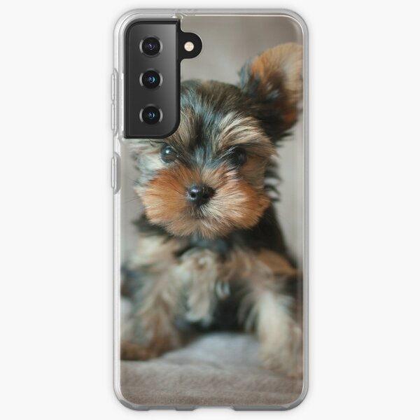 Cute puppy of the Yorkshire Terrier Samsung Galaxy Soft Case