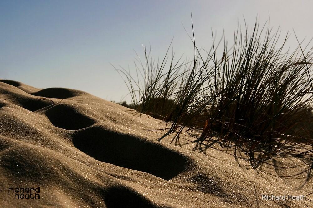 Golden Beach Dune 2 by Richard Heath