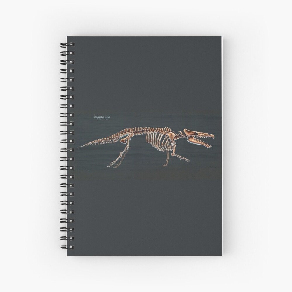 Estudio esquelético de Maiacetus inuus Cuaderno de espiral