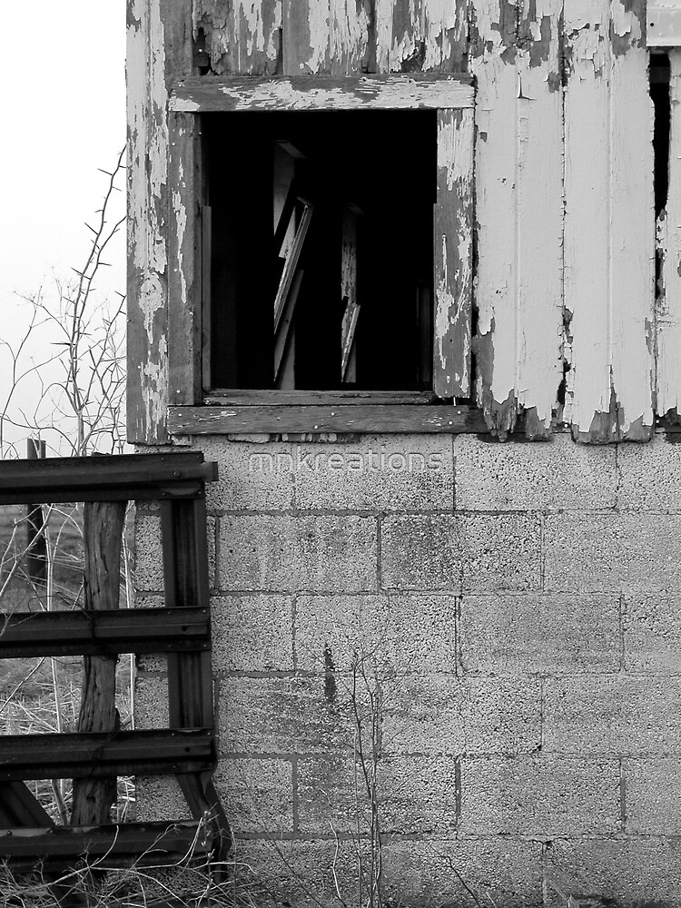 Old barn window by mnkreations