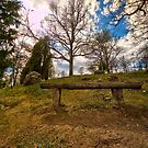 The bench uppon the hill by João Figueiredo