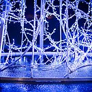 Winter Wonderland - Lights, Frozen, Water, Ice #2 by Fotopia