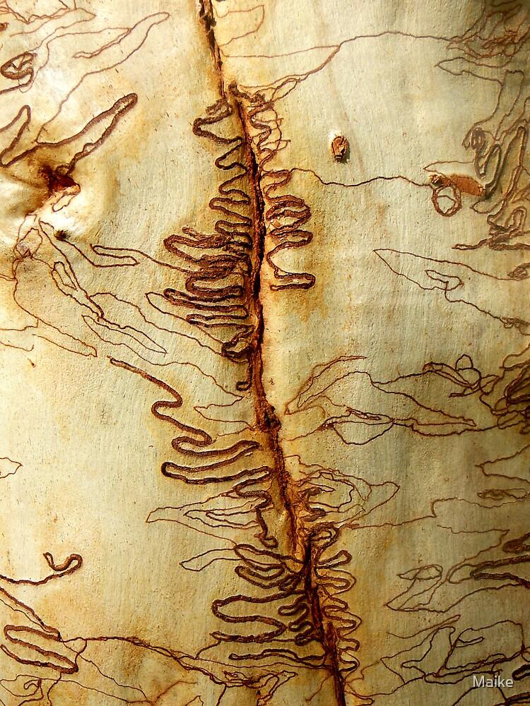 Australian Scribble Bark by Maike
