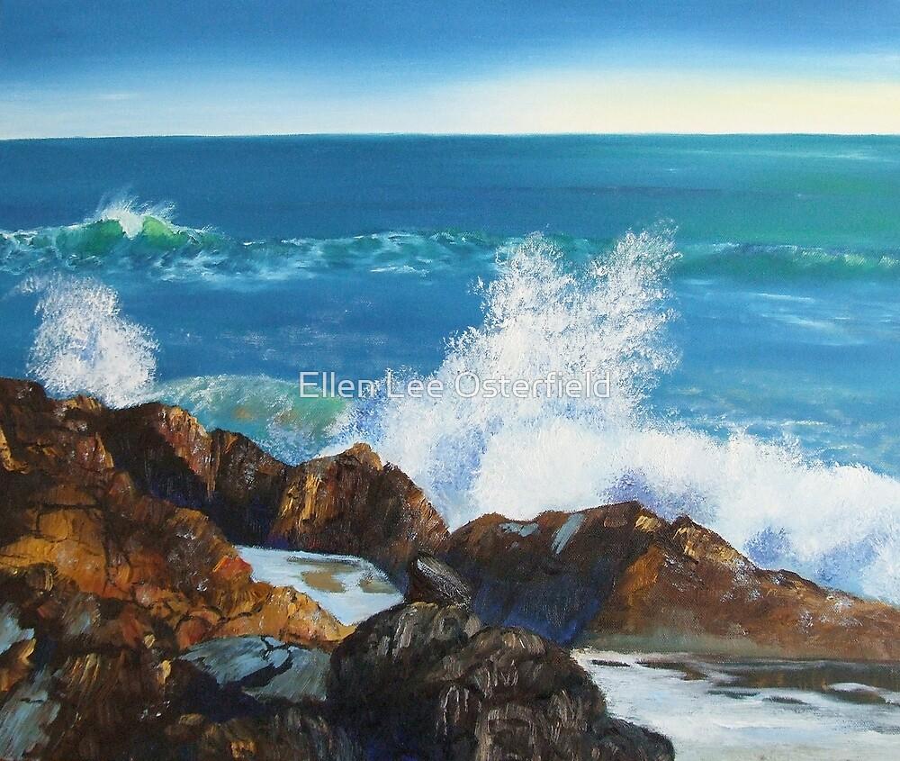 Splash by Ellen Lee Osterfield