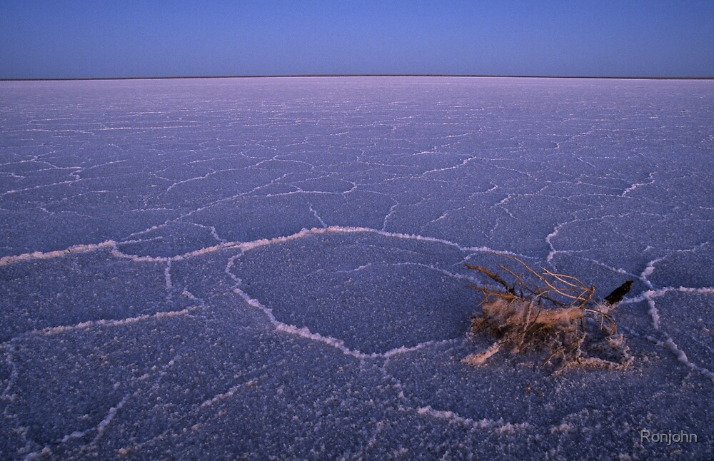 Lake Eyre by Ronjohn