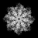 Smoke Kaleidoscope I by Fotopia