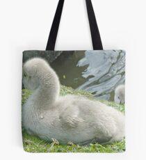 Peek-A-Boo - Two Black Swan Cygnets Tote Bag