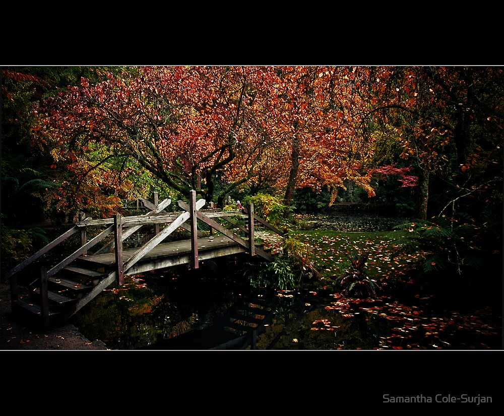 Bridge over Autumn waters by Samantha Cole-Surjan